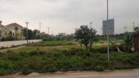 Đất dịch vụ thôn Phú Vinh đã được chia lô